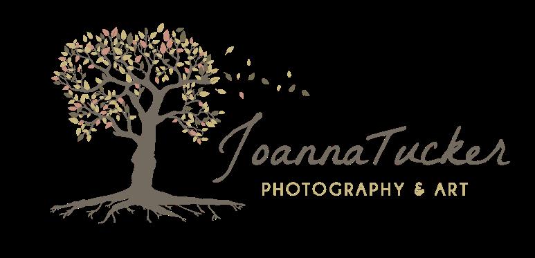 Joanna Tucker, Photography & Art